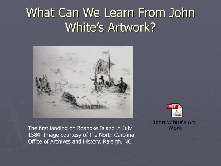 What Can We Learn From John White's Artwork?