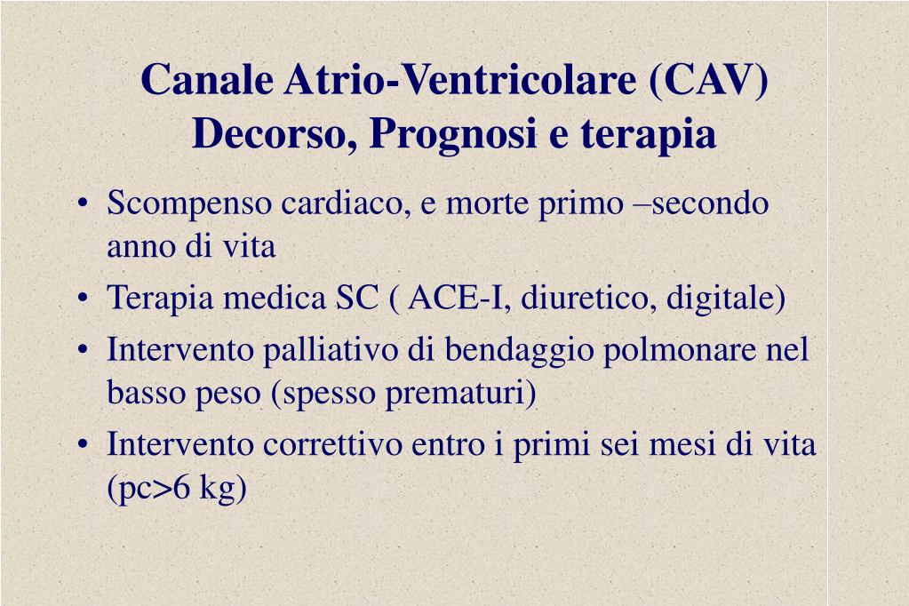 Canale Atrio-Ventricolare (CAV)