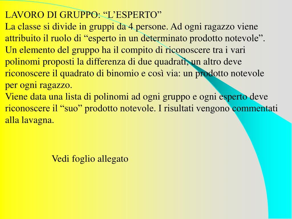 """LAVORO DI GRUPPO: """"L'ESPERTO"""""""