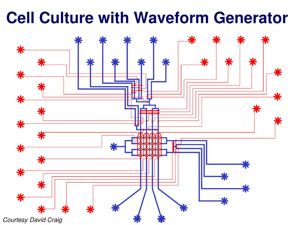 Cell Culture with Waveform Generator