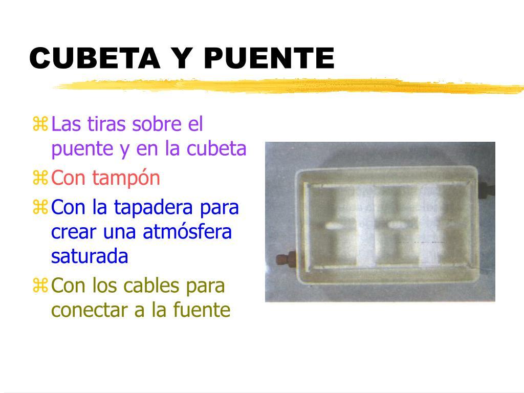 CUBETA Y PUENTE