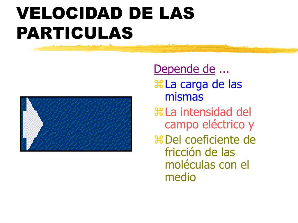 VELOCIDAD DE LAS PARTICULAS