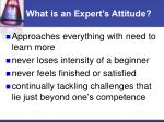 what is an expert s attitude