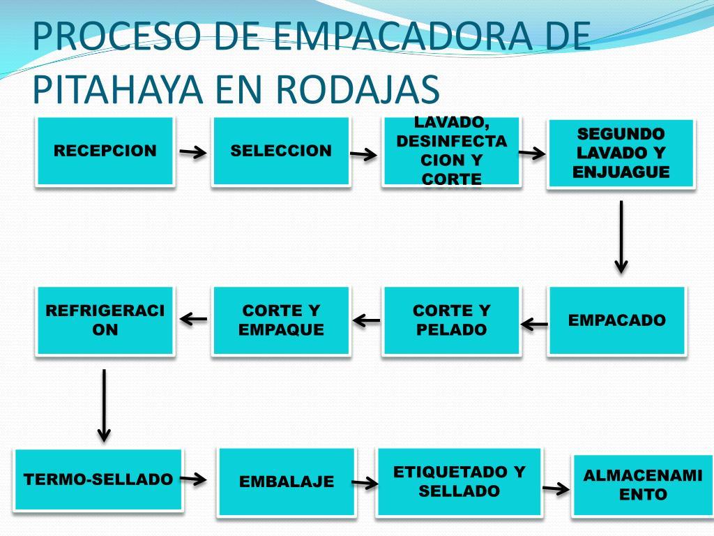 PROCESO DE EMPACADORA DE PITAHAYA EN RODAJAS