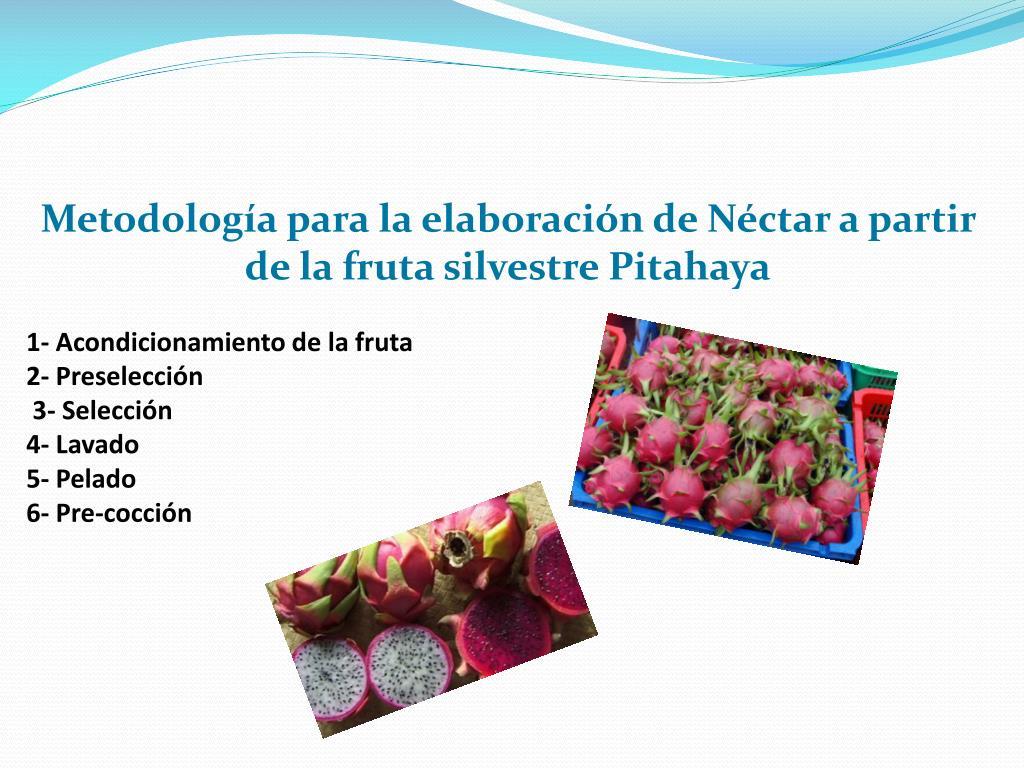 Metodología para la elaboración de Néctar a partir de la fruta silvestre Pitahaya