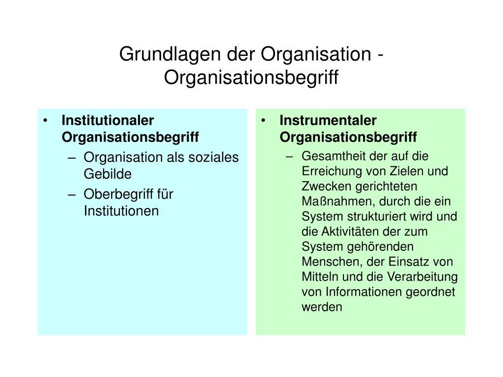 Institutionaler Organisationsbegriff