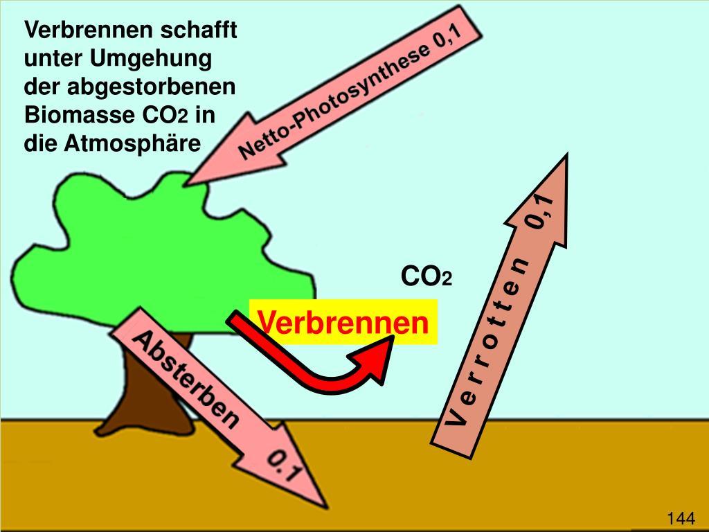 Verbrennen schafft unter Umgehung der abgestorbenen Biomasse CO