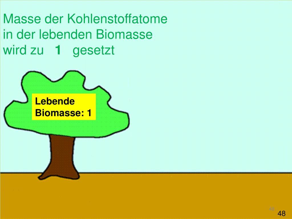 Masse der Kohlenstoffatome in der lebenden Biomasse wird zu