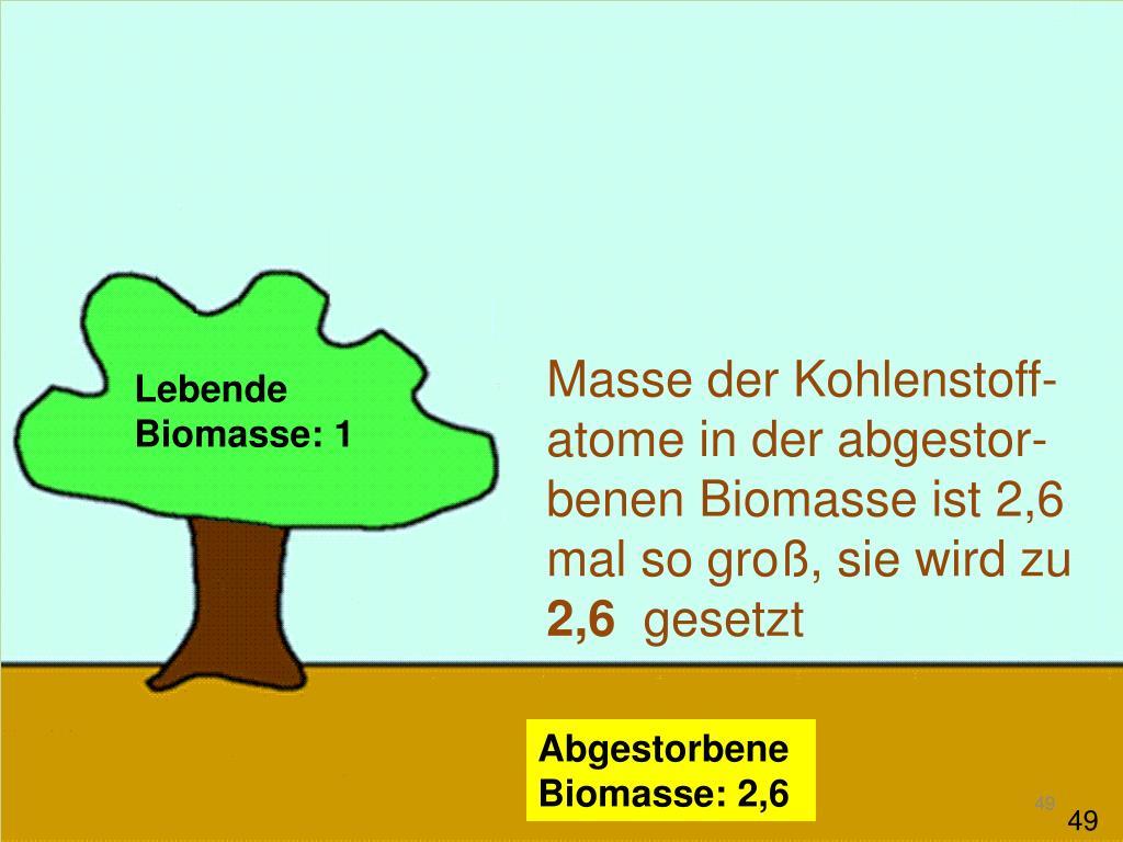 Masse der Kohlenstoff-