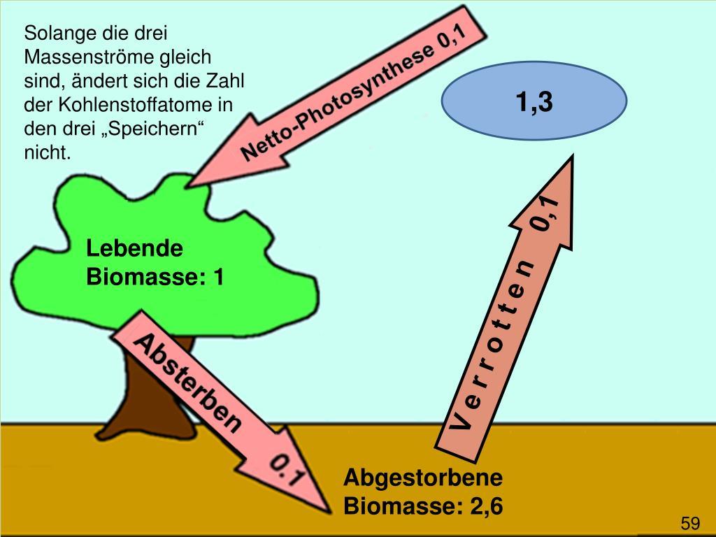 """Solange die drei Massenströme gleich sind, ändert sich die Zahl der Kohlenstoffatome in den drei """"Speichern"""" nicht."""