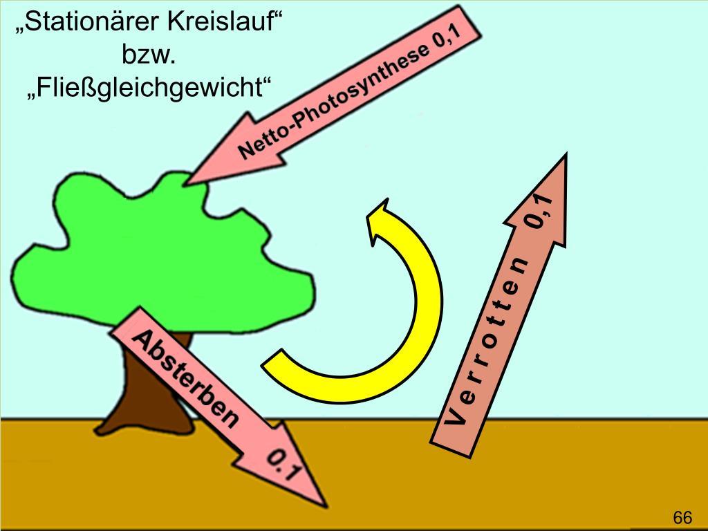 """Stationärer Kreislauf"""