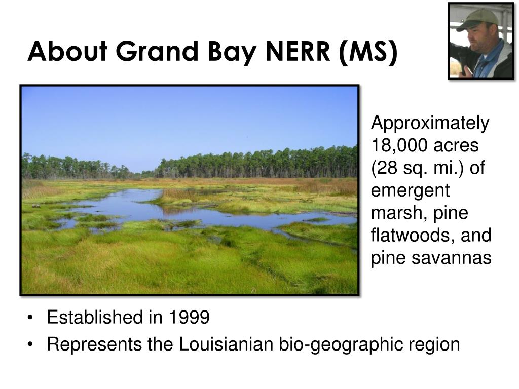 About Grand Bay NERR (MS)