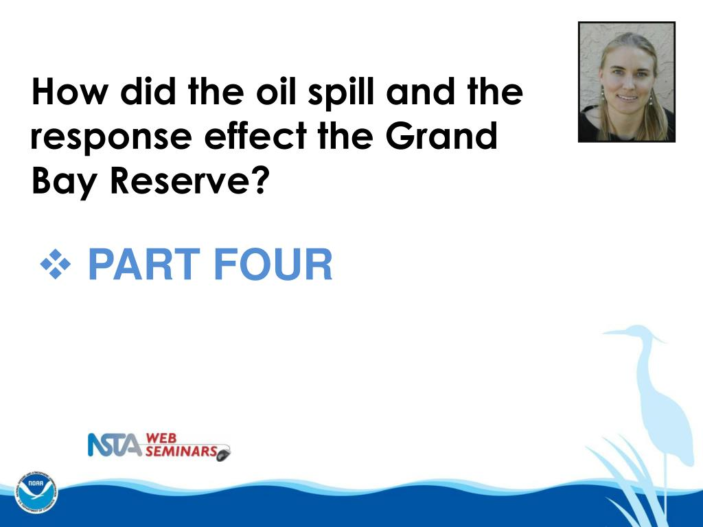 How did the oil spill and the response effect the Grand Bay Reserve?