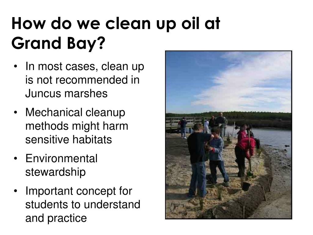 How do we clean up oil at