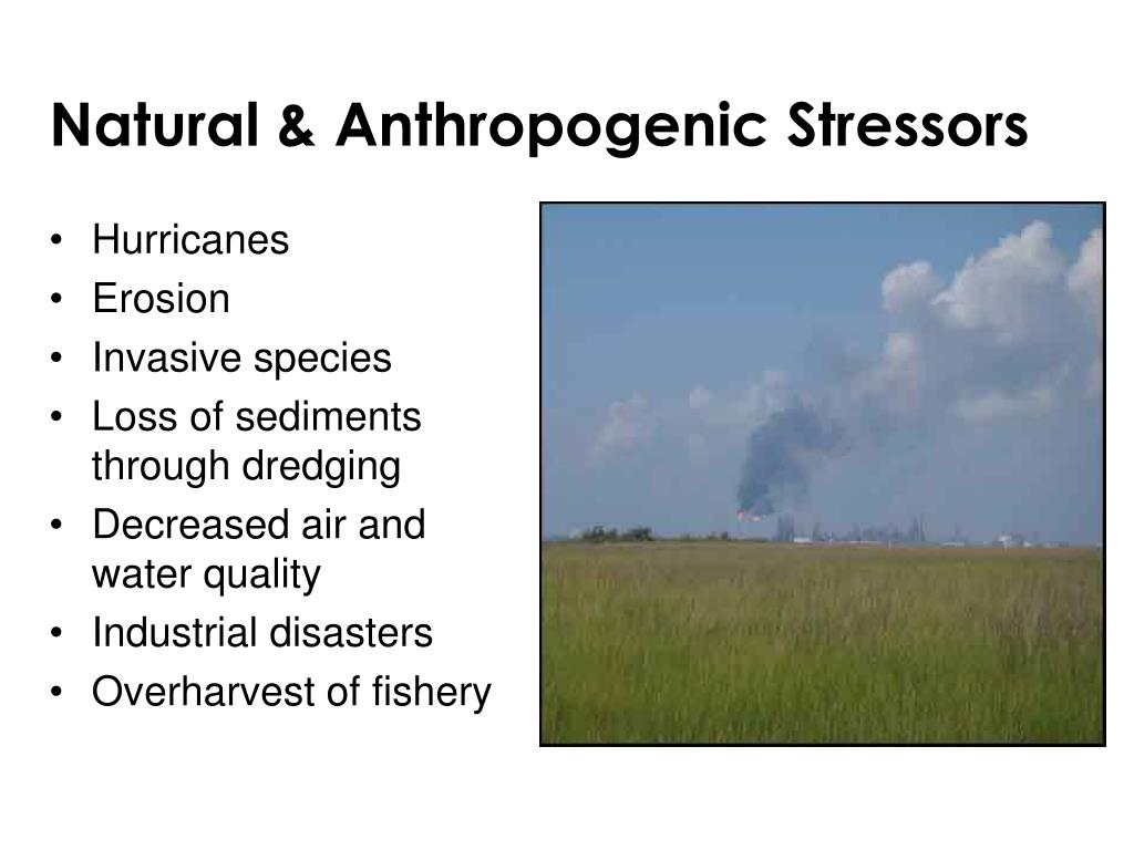 Natural & Anthropogenic Stressors