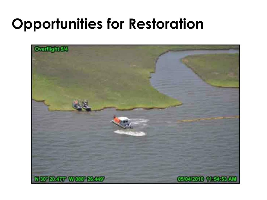 Opportunities for Restoration
