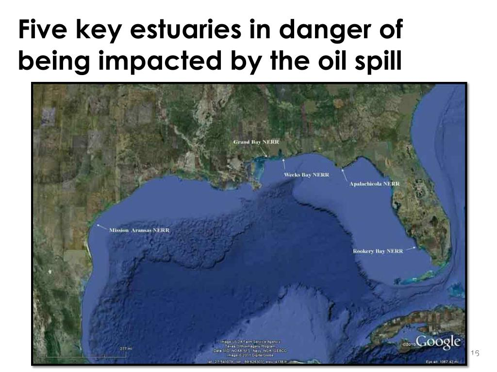 Five key estuaries in danger of being impacted by the oil spill