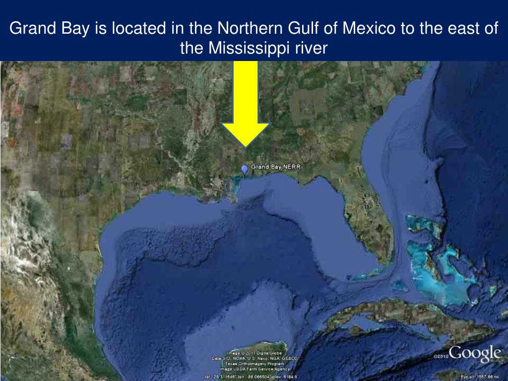 Grand Bay is located in the Northern Gulf of Mexico to the east of the Mississippi river