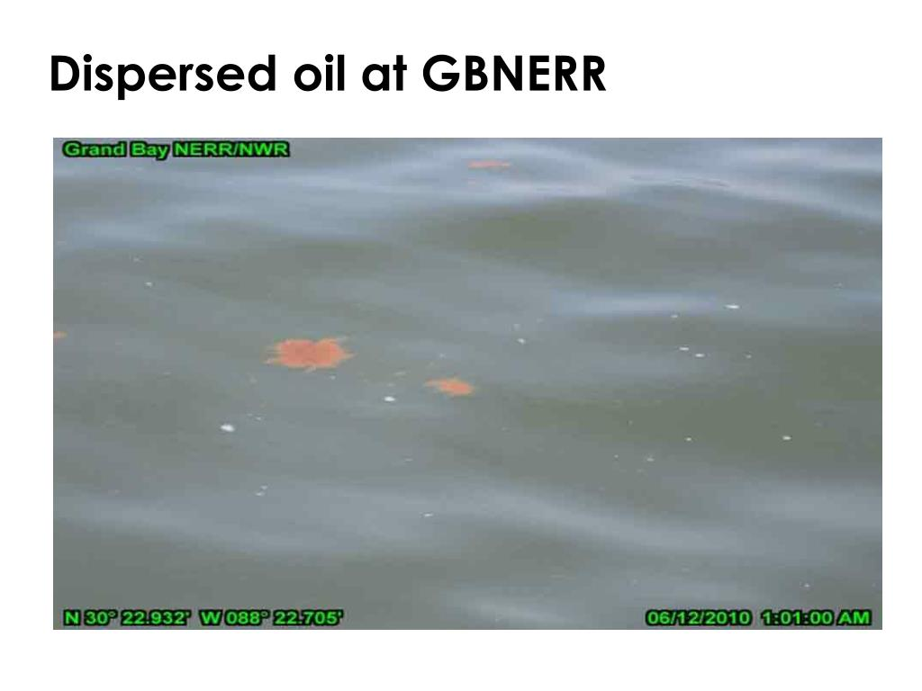 Dispersed oil at GBNERR