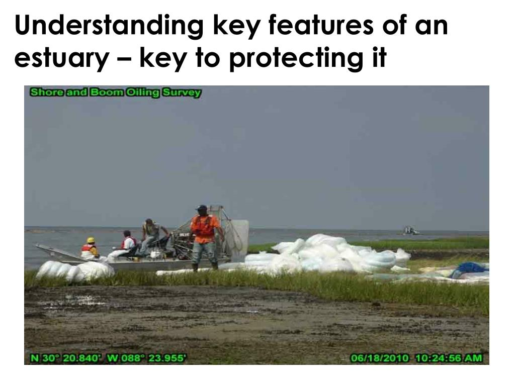 Understanding key features of an estuary – key to protecting it