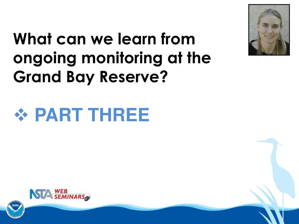 What can we learn from ongoing monitoring at the Grand Bay Reserve?