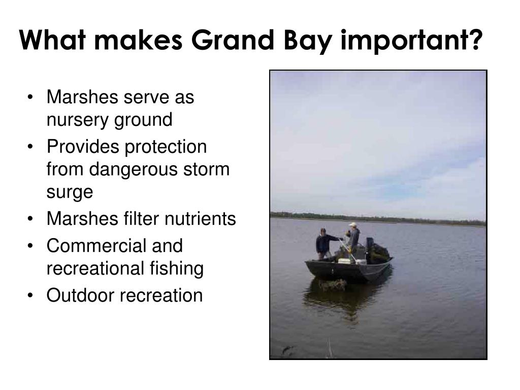 What makes Grand Bay important?
