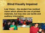 blind visually impaired29