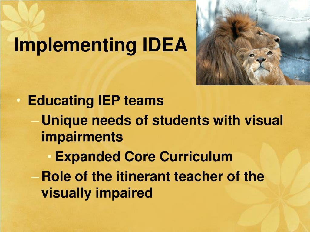Implementing IDEA