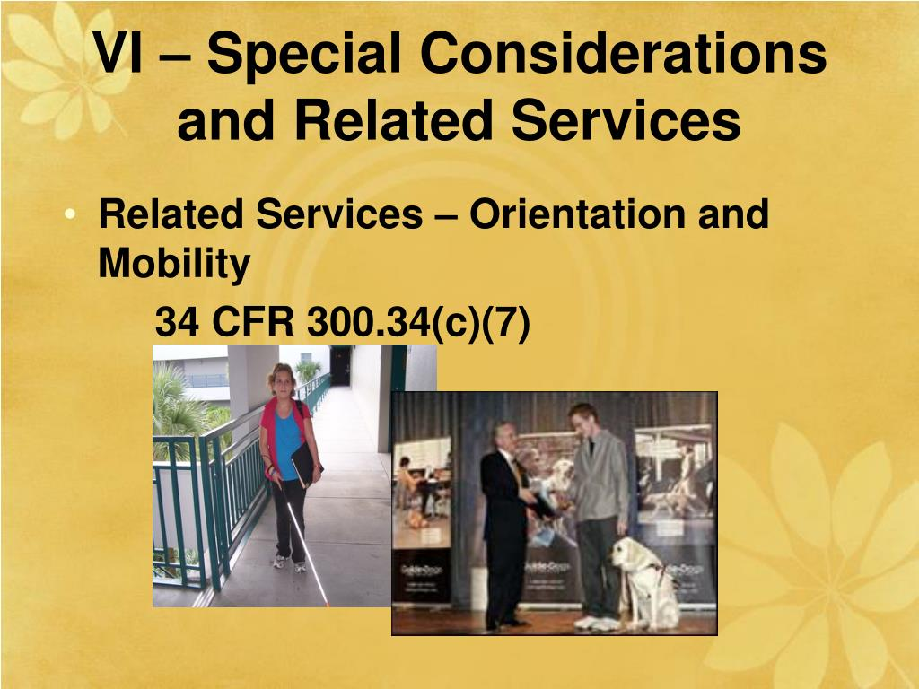 VI – Special Considerations and Related Services
