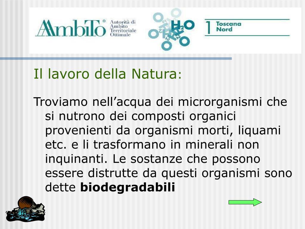 Il lavoro della Natura