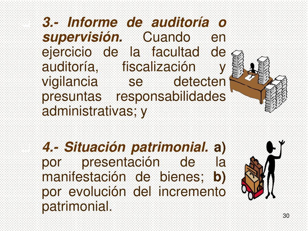 3.- Informe de auditoría o supervisión