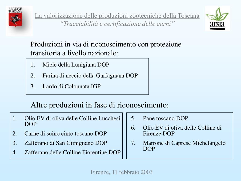 Produzioni in via di riconoscimento con protezione transitoria a livello nazionale:
