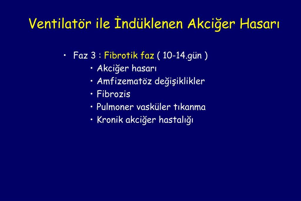 Ventilatör ile İndüklenen Akciğer Hasarı