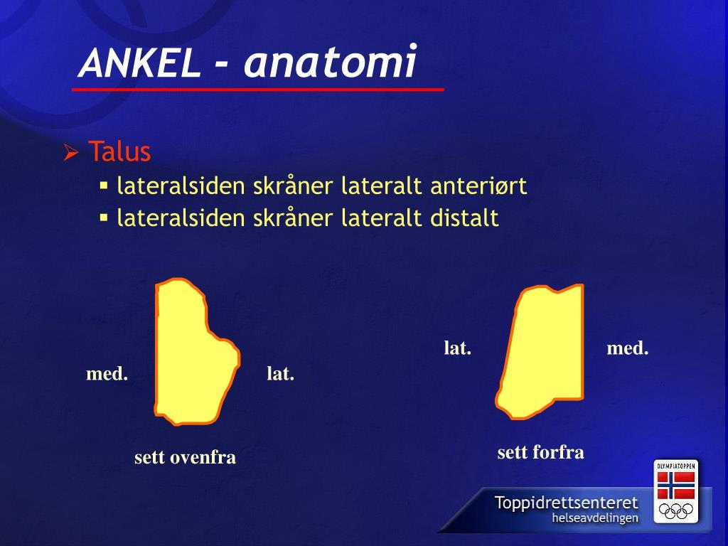 ANKEL