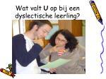 wat valt u op bij een dyslectische leerling