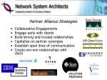 partner alliance strategies