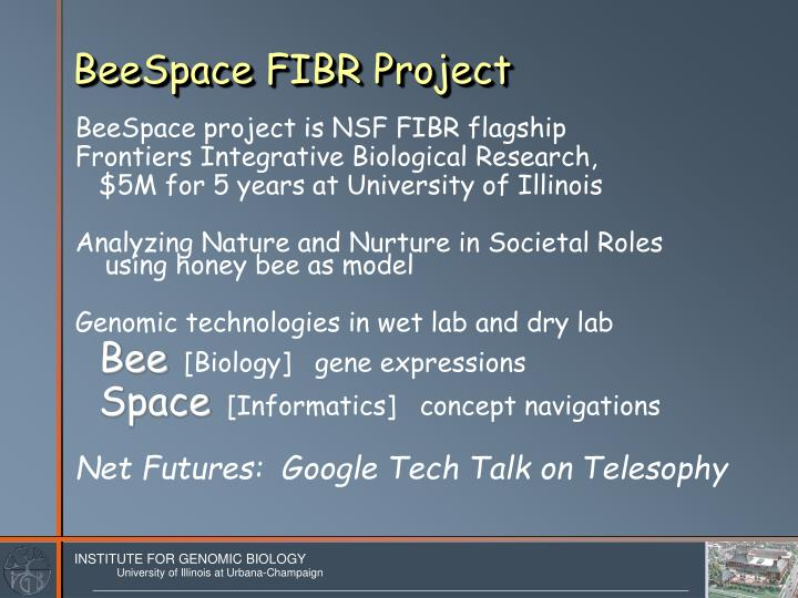 Beespace fibr project