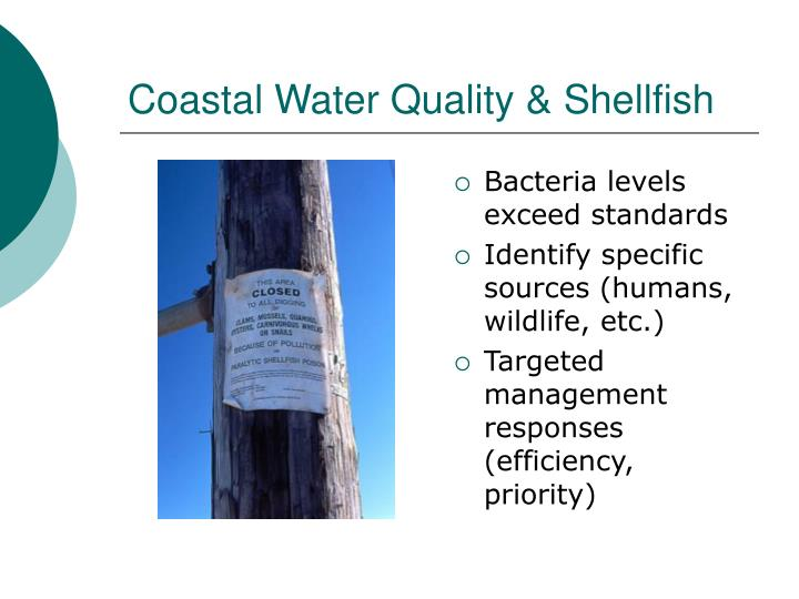 Coastal Water Quality & Shellfish