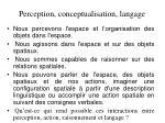 perception conceptualisation langage
