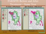 farsite before and after treatment same year