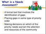 what is a needs assessment