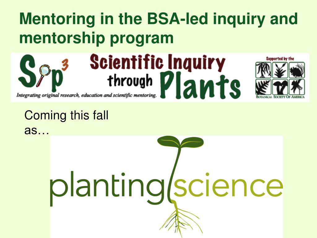 Mentoring in the BSA-led inquiry and mentorship program