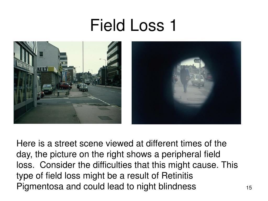 Field Loss 1