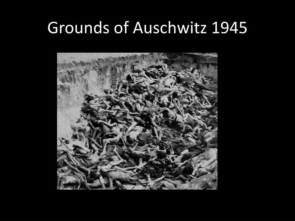 Grounds of Auschwitz 1945