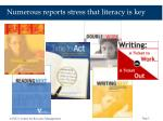 numerous reports stress that literacy is key
