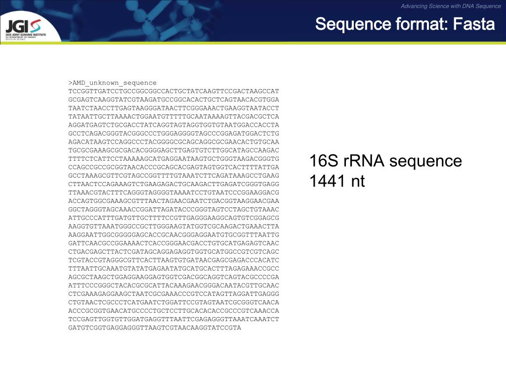 Sequence format: Fasta
