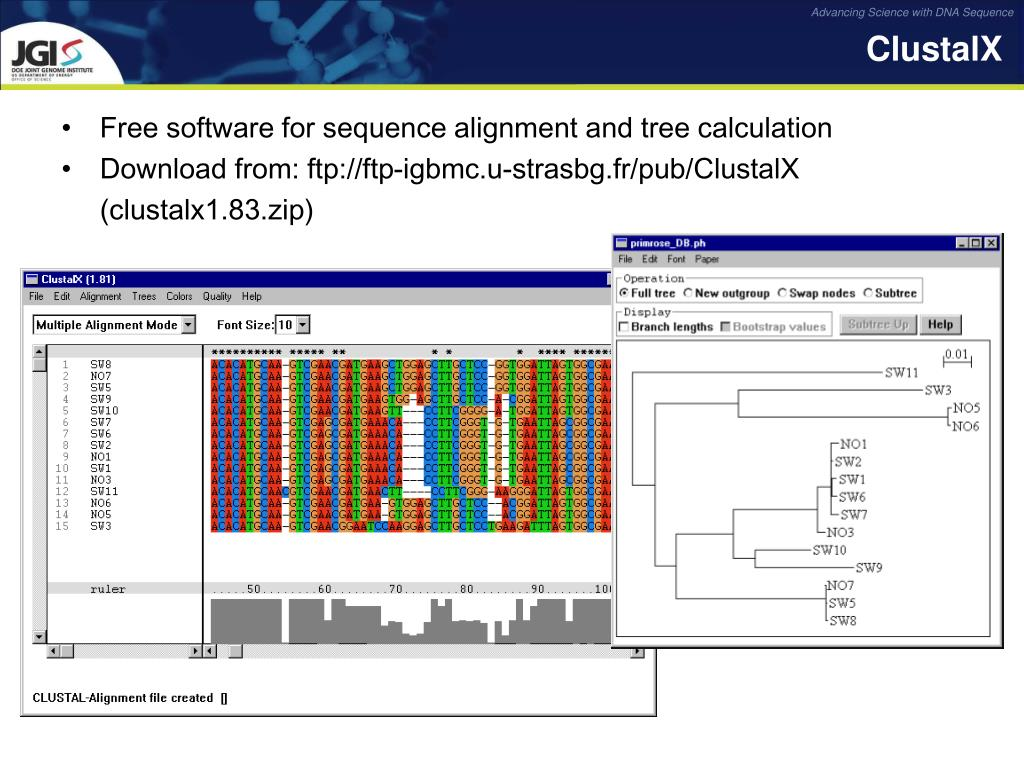 Free software for sequence alignment and tree calculation