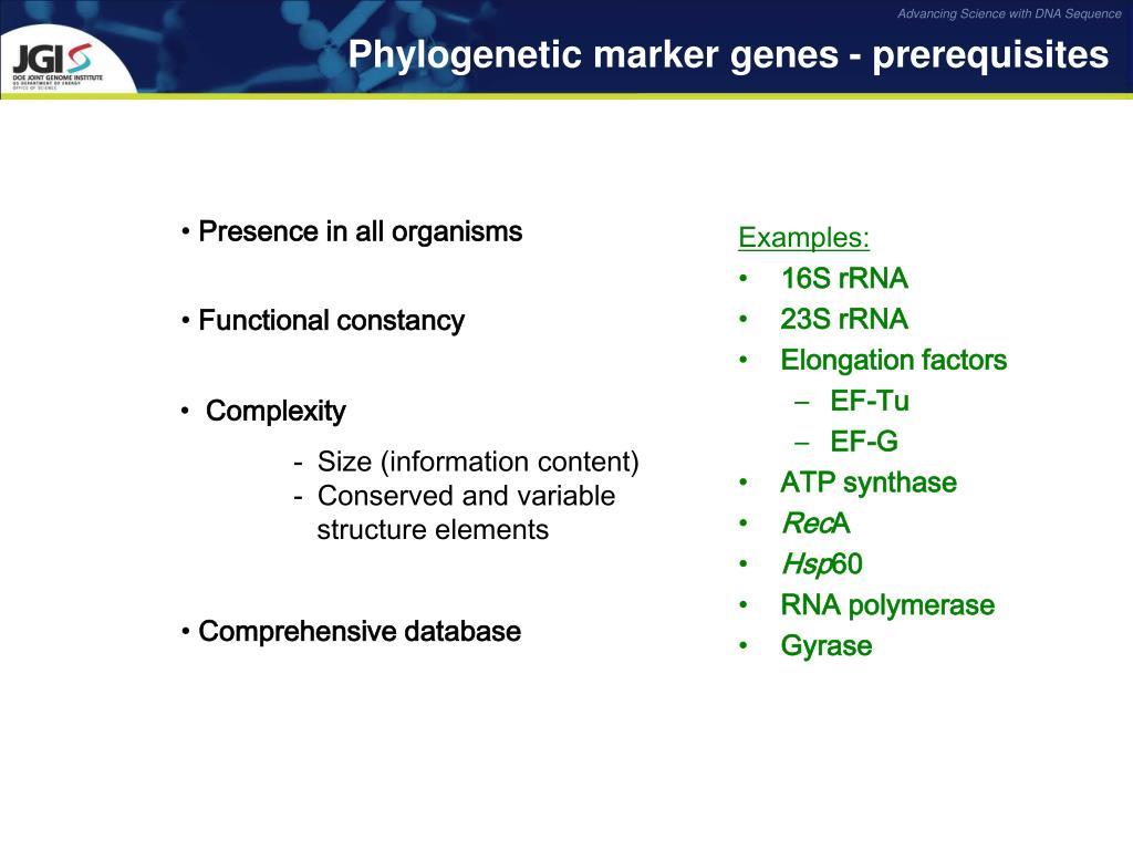 Phylogenetic marker genes - prerequisites