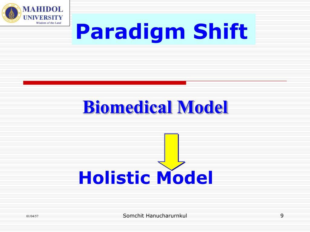 Holistic Model