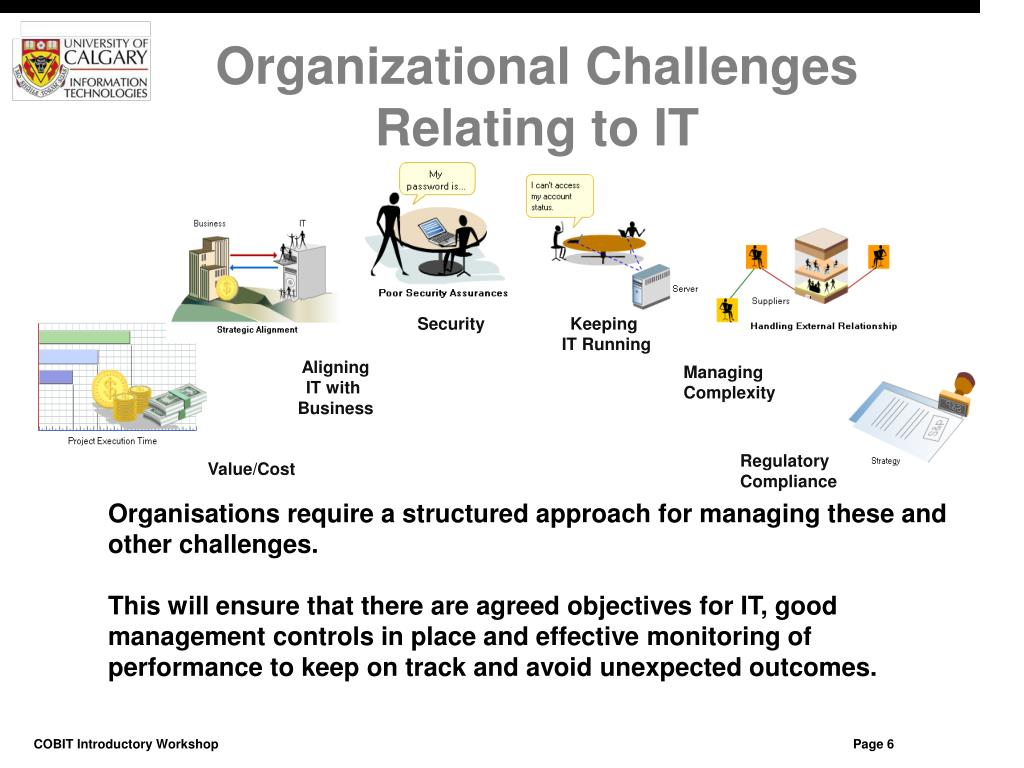 Organizational Challenges Relating to IT